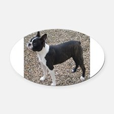 Boston Terrier Pup2 Oval Car Magnet