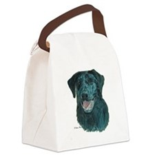dtshirt.png Canvas Lunch Bag