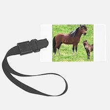 Mini Pinto Stallion & Daughte Luggage Tag