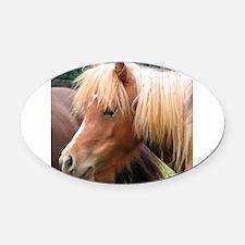 Classic Mini Horse Portrait Oval Car Magnet