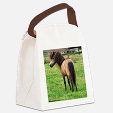 Miniature Horse Buckin Velvet Canvas Lunch Bag
