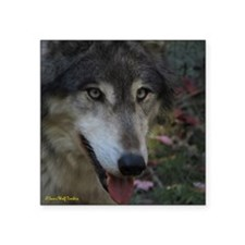 """3wolf9x12.png Square Sticker 3"""" x 3"""""""