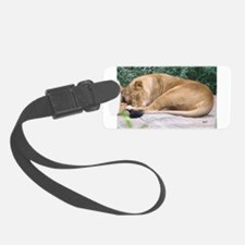 sleepylionessframe.png Luggage Tag