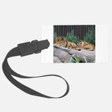 Sleepy Lions Luggage Tag