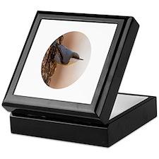 Brown-headed Nuthatch Keepsake Box