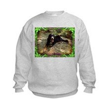 Berner atop Stream Bed, Leaf Frame Sweatshirt
