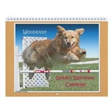 Golden retriever agility 2017 Wall Calendars