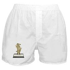 Crappy Lighting Equipment Award Boxer Shorts