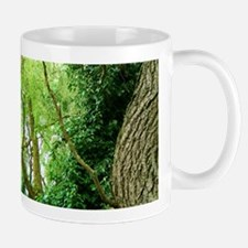 willow and ivy Mug