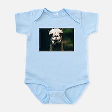 Hi there! Como te llama? Infant Bodysuit