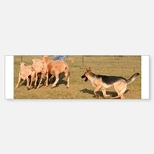 Herding Bumper Bumper Sticker