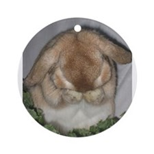 Stuff to go thr.jpg Ornament (Round)