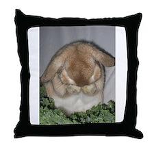 Stuff to go thr.jpg Throw Pillow
