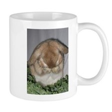 Stuff to go thr.jpg Mug