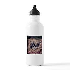 A tear of Terriers Sports Water Bottle