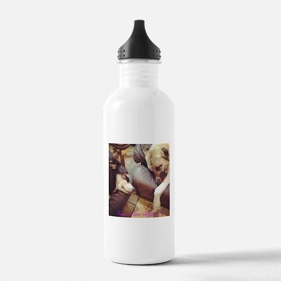 Two Dogs Sleeping Sports Water Bottle