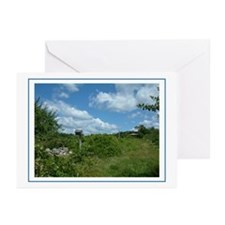 Orchard Greeting Cards (Pk of 10)