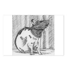 Pocket Pet Postcards (Package of 8)