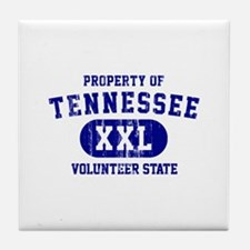 Property of Tennessee, Volunteer State Tile Coaste