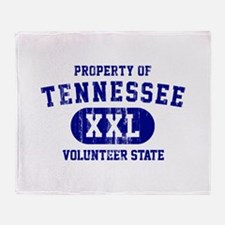 Property of Tennessee, Volunteer State Stadium Bl