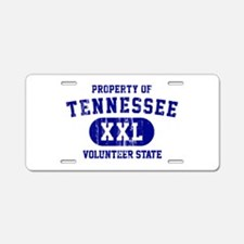 Property of Tennessee, Volunteer State Aluminum Li