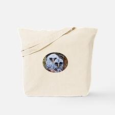 barred owl chicks Tote Bag