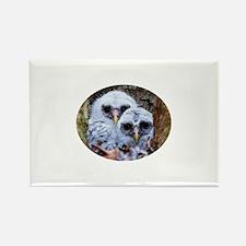 barred owl chicks Rectangle Magnet