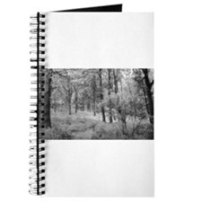 Platinum Forest Journal
