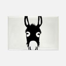 donkey mule horse ass jackass burro fool Rectangle