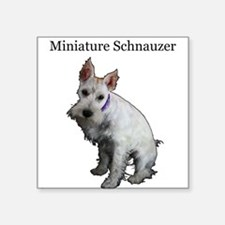 "Miniature Schnauzer Square Sticker 3"" x 3"""