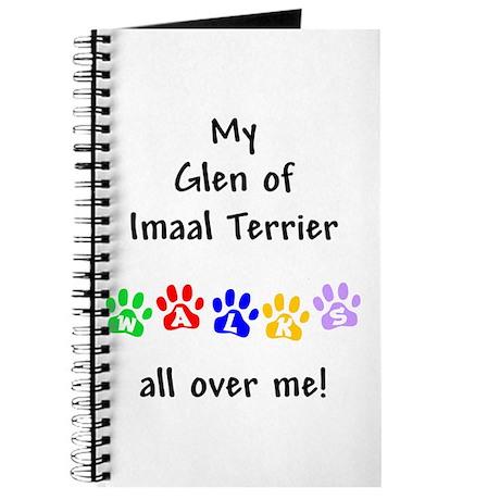 Glen of Imaal Walks Journal
