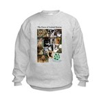 The Faces of Animal Rescue Kids Sweatshirt
