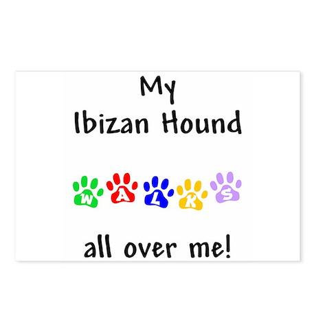 Ibizan Hound Walks Postcards (Package of 8)