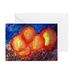 Oranges Greeting Cards (Pk of 20)