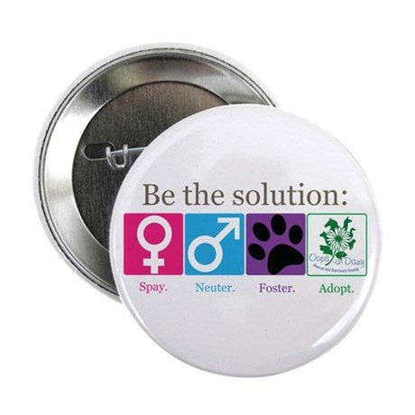 "Be the Solution 2.25"" Button"