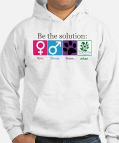 Be the Solution Hoodie