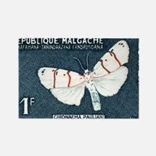 Cute Mariposas Rectangle Magnet