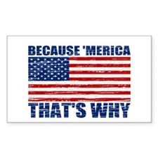 BECAUSE MERICA THATS WHY Decal