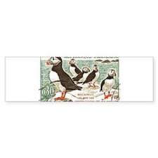 Cute Atlantic puffin Bumper Sticker