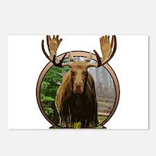 Moose in woods Postcards (Package of 8)