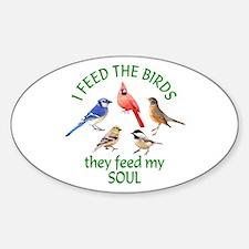 Bird Feeder Decal