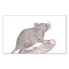 Baby Rat Decal