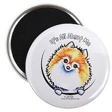 Pomeranian IAAM Magnet