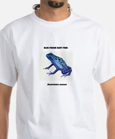 FROGS - BLUE POISON DART FROG