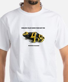 FROGS - BUMBLEBEE (YELLOW BANDED) POISON DART FROG