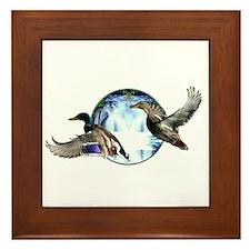 Mallards in flight Framed Tile