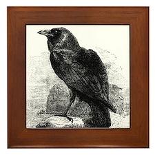 Edgar Allan Poe Raven Framed Tile