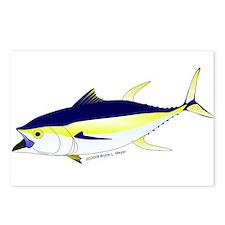 Yellowfin Tuna (Allison Tuna) Postcards (Package o