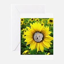 Summer Sunflower Greeting Cards (Pk of 10)