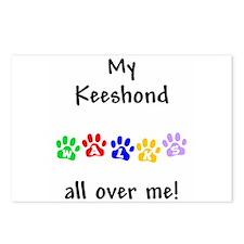 Keeshond Walks Postcards (Package of 8)